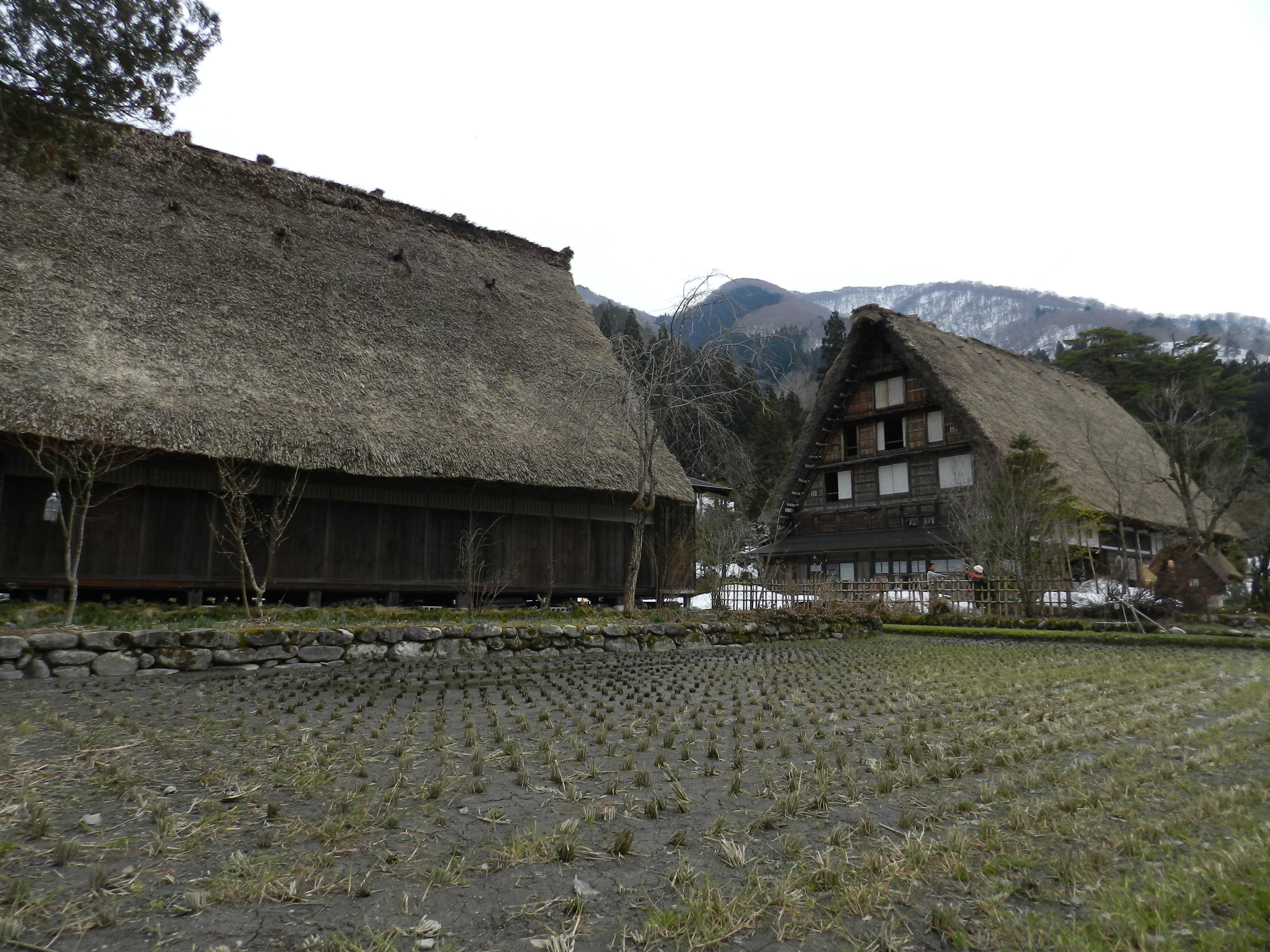 Shirakawago il villaggio che ha fermato il tempo for Piccole piantagioni
